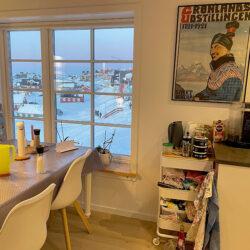 Traehus-i-Nuuk-015